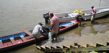 navua river longboats
