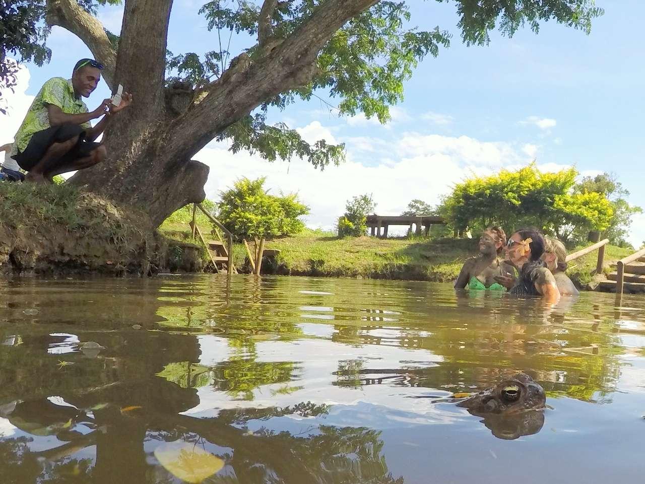 Mud Pools And Hot Springs In Fiji