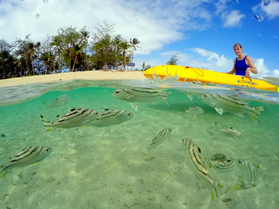 Best Island Day Trips Fiji