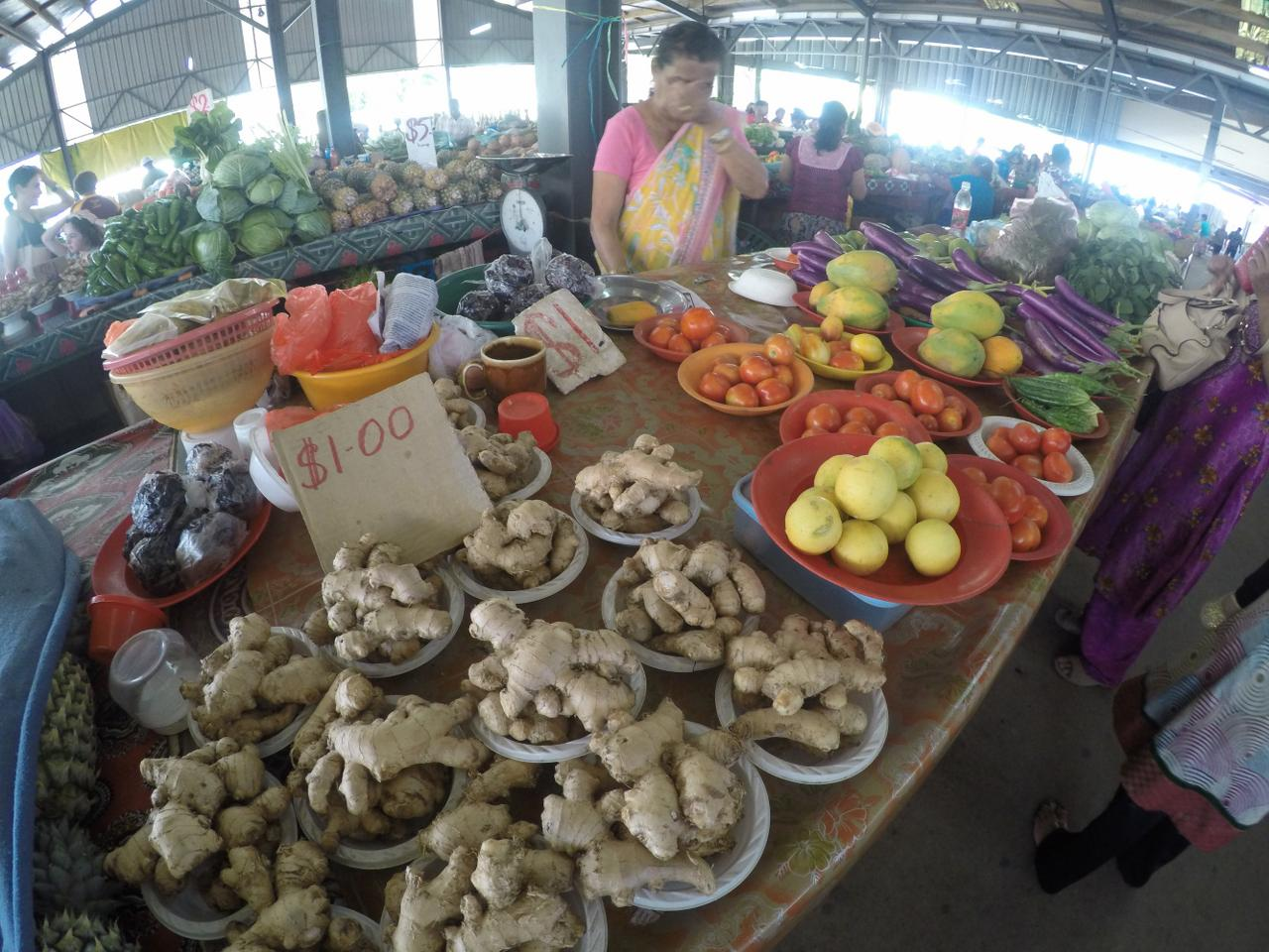 Cost of Living and Prices of Food in Fiji